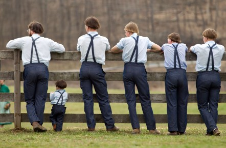 The Amish & Minnonite Communities in Liberty, KY