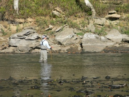 Stone Free Drifter – Cumberland River Fly Fishing Guide