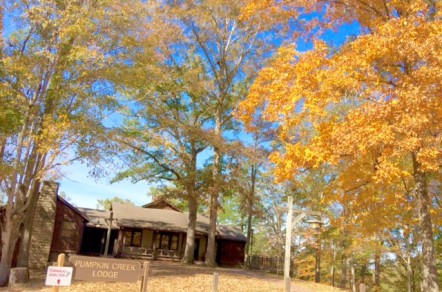 Lake Cumberland Cabins Surrounded by Natural Beauty