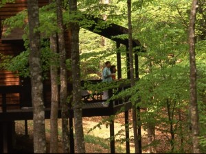 photo of Lake Cumberland State Resort Park Cabin rentals