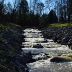 Photo of the Hatchery Creek trout stream in Jamestown Kentucky.  The trout stream flows into the Cumberland River.  Blue sky with trout stream