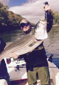 Photo of a man holding a Lake Cumberland Striper