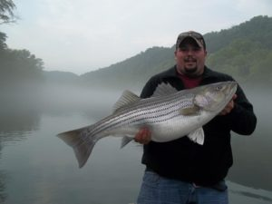Best fishing in Kentucky is on the Cumberland River & Lake Cumberland