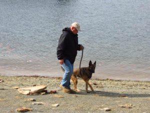 Lake Cumberland pet friendly vacation ideas
