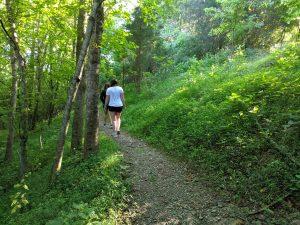 Lake Cumberland Hiking Trails - Kentucky Hiking trails