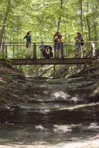 Lake Cumberland State Resort Park - hiking trails