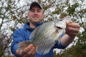 Lake Cumberland Crappie Fishing